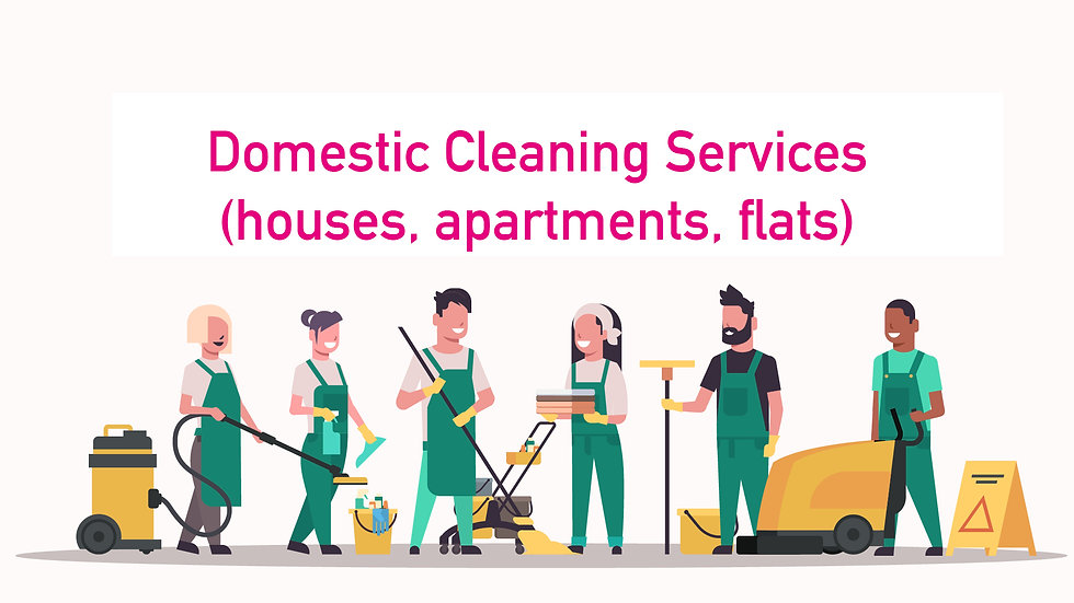 Daisyfresh domestic cleaning services video