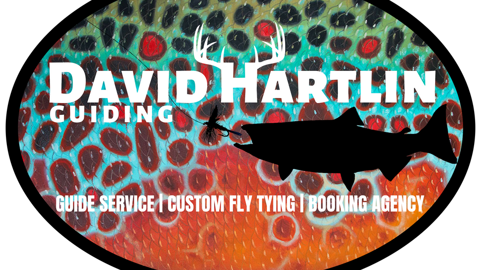 David Hartlin Live Events