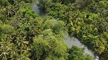Over the Amazon