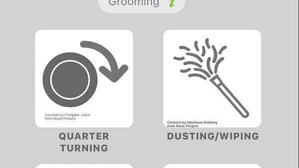 Plant Care App Prototype