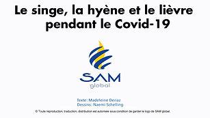 COVID-19 SAM global