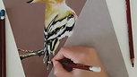 Derwent Pastel Kalem Çalışması
