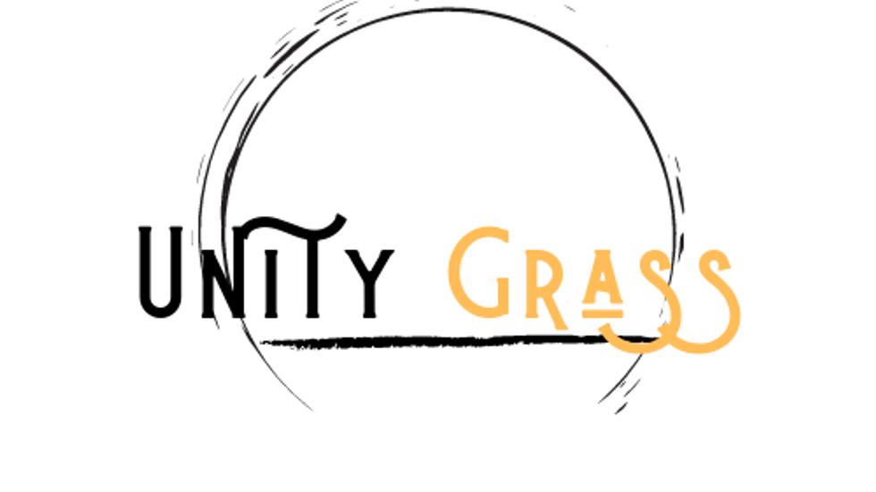 UNITY Grass