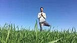 בשדה חיטה