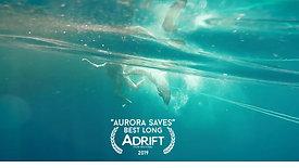 Aurora Saves