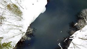 Winter on Pushaw Stream