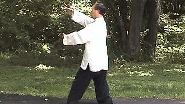QIGONG movements - 3 views Part 2