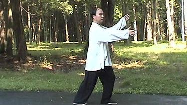 Performance Form - Wu Ji Jing Gong Tai Chi