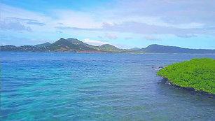 Caribbean - Saline Island