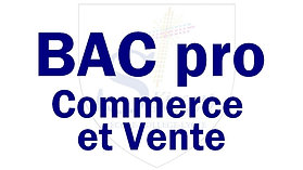 Bac pro commerce et vente