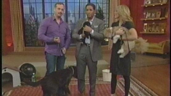 Harrison Forbes Pet Talk Demo Reel