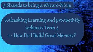 Unleashing Learning Webinar 1 Term 4