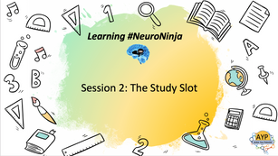 Learning Neuro-Ninja Session 2