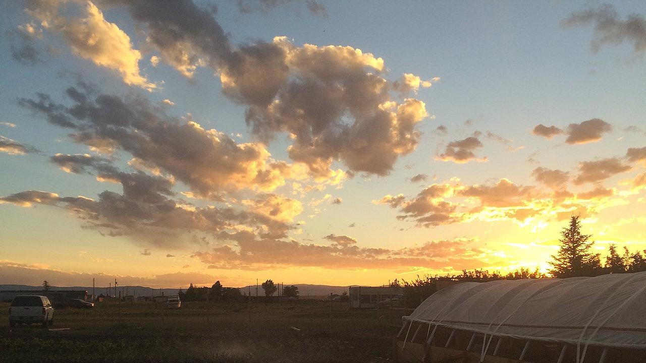 Feeding Laramie Valley Video Chronicles