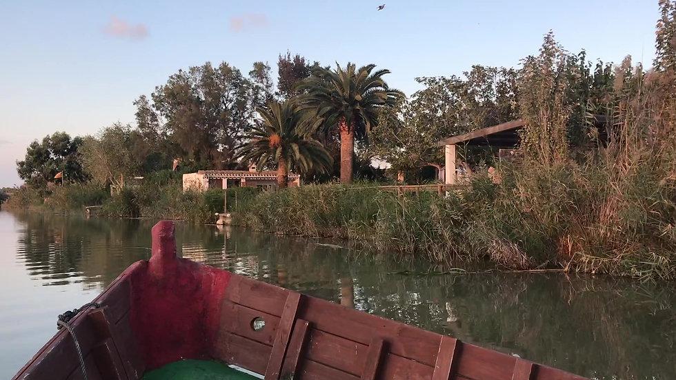 Boat Ride at l'Albufera
