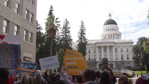 California Cities Show Stark Differences on Immigration