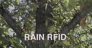 MONSOONRF / RAIN