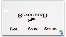 Blackbird EFT Multi-lane Controller