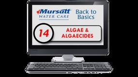 Part 14 Algae & Algaecides