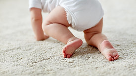 4 Crawling Techniques