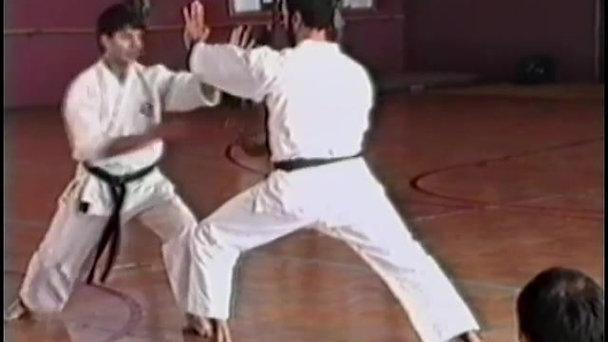 Karatedo Energie 1997