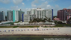 SEACOAST BEACH VIEW