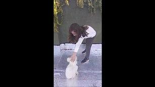Clarita, entrenadora de mascotas