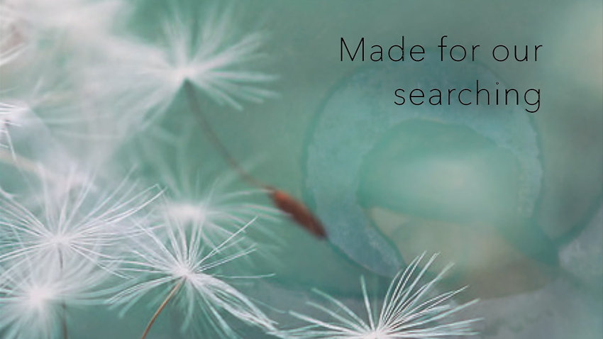 Made for our searching