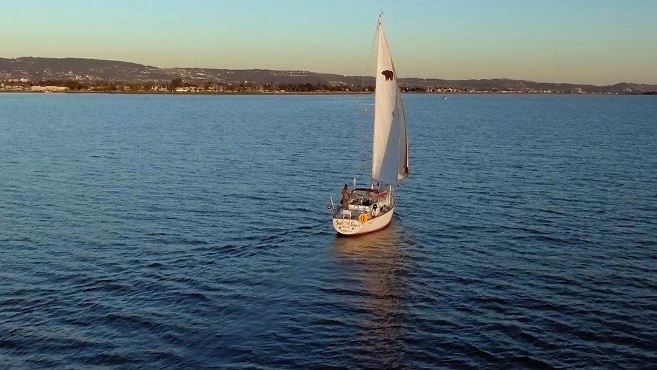 Sailing The Sea Bear