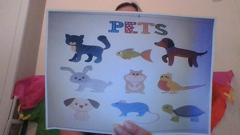 Week 10 Pets The Story Frog Online Tiddlers Classes with Hannah