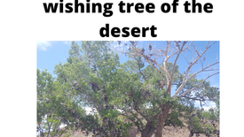 The magical wishing tree of the desert