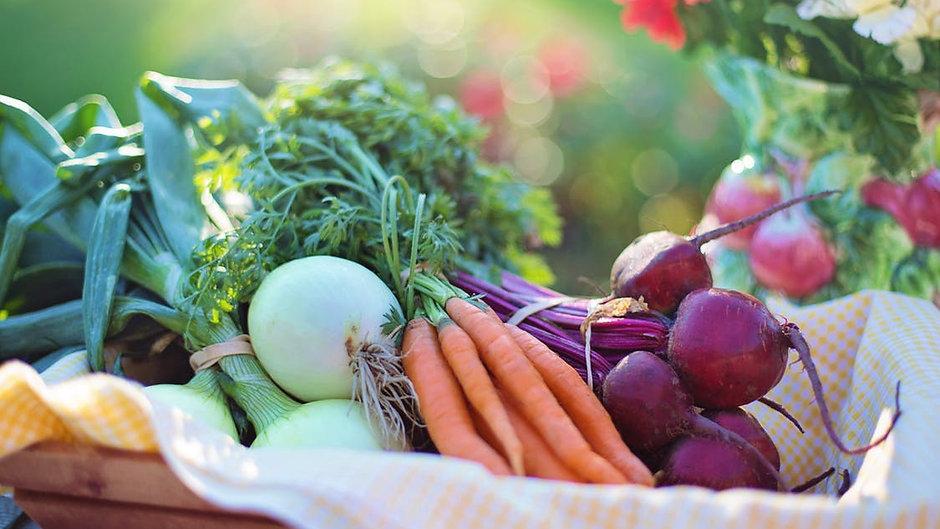 Ateliers de Cuisine Healthy Veggie: Simple, Délicieux et Rapide