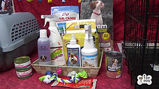 Top Dog Puppy Kit
