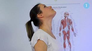 1. vaja: mobilizacija vratne hrbtenice I