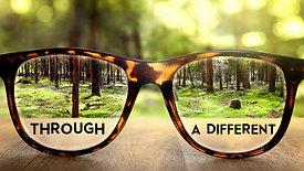 Through Different Lenses