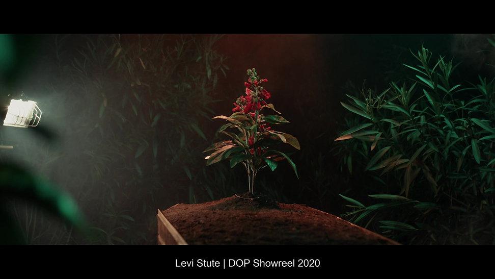 DOP_SHOWREEL_LEVI_STUTE