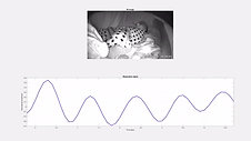 Infant Remote Breathing Monitor using a Wyzecam camera works with a fully swaddled infant