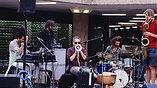 Kraut am Ebertplatz (Live in Köln)