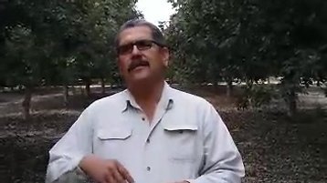 #YoConAustar Nogal en Hermosillo
