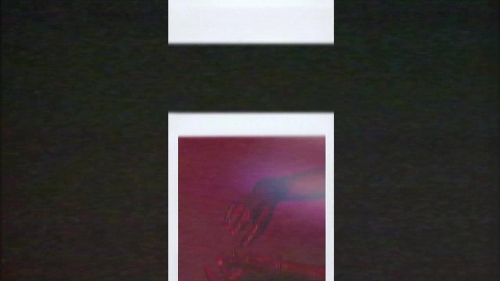 Flesh Polaroid Teaser