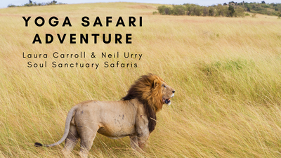 Soul Sanctuary Safaris with Neil & Laura Carroll