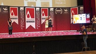 Silver A'Design Award