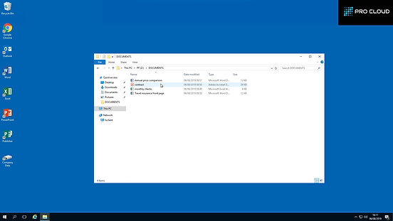 Pro Cloud Hosted Desktop Overview