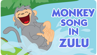 Monkey Song - Zulu