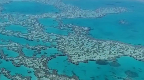 The Great Barrier Reef from the sky!