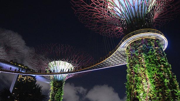 Garden Rhapsody - Gardens By The Bay, SINGAPORE