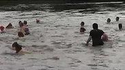 Elbeschwimmen_2011