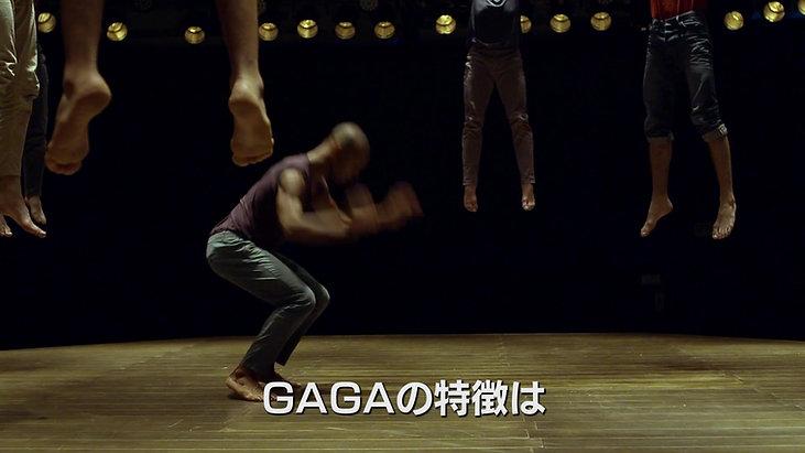ミスター・ガガ