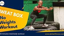 SWEAT BOX no WEIGHTS WORKOUT