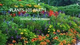PLANTS 101 PART 1